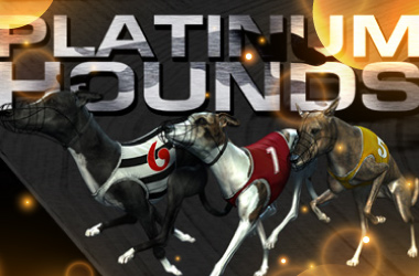 Platinum Hounds